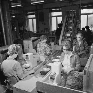 Tiedemanns Tobaksfabrik, 1964. Foto: Leif Ørnelund/Oslo Museum.